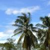 Mandrejant a Don Khon, una de les 4000 illes