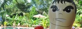 Kranks i kokos, a Kep